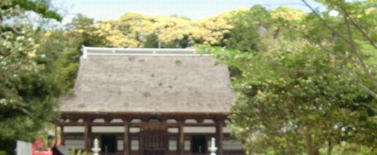 宝林寺の佛殿